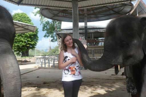 Поцелуй слоненка