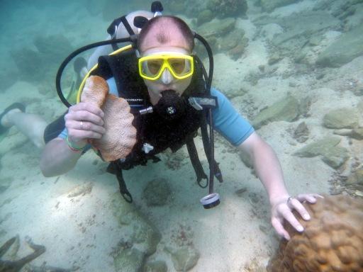 Я нашел красивый коралл