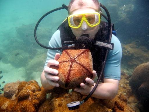 Еще один коралл, дивной красоты