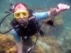 Морские ежи - самые долгоживущие организмы на земле
