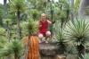 В зарослях кактусов