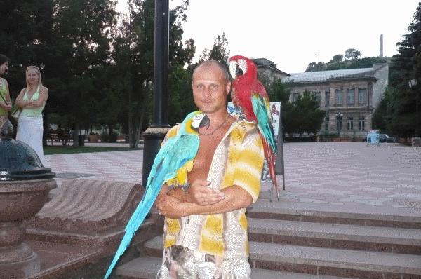 Опять с птичками